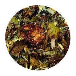 Jardin des sens thé blanc essencia comptoir le havre