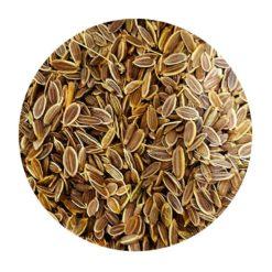 Aneth en graines épices en vrac