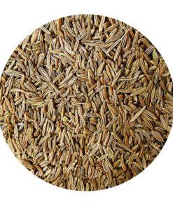 Carvi en graine acheter épices en vrac