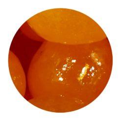 Mandarines confites Lillamand en vrac Comptoir Arômes