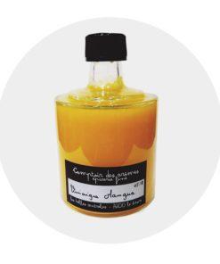 Vinaigre de mangue pulpe de fruits Comptoir